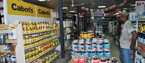 Badili in deal with US paint firm