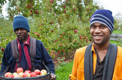 PNG on new seasonal worker list