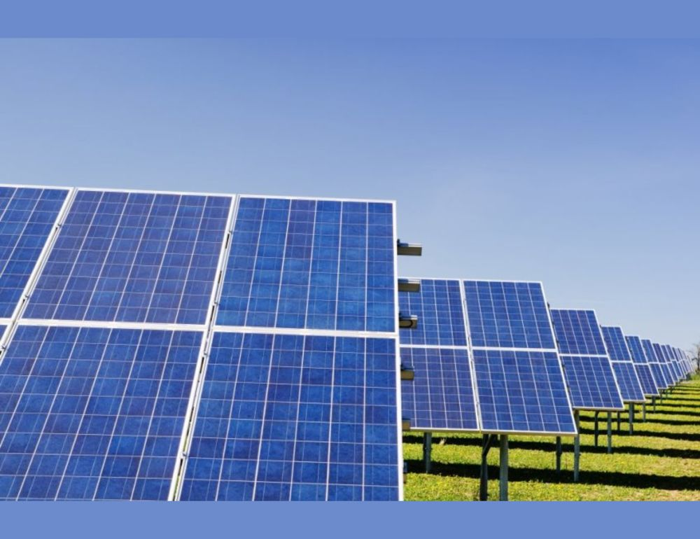 IFC warns of 'inferior' solar products