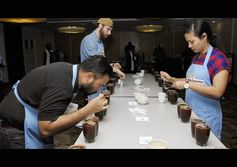 67 coffees under scrutiny in Moresby