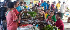 Alotau fish market handed over to NFA