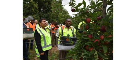 PNG urges more NZ seasonal work