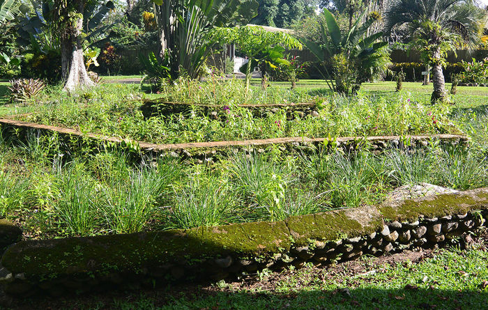 In support of Lae Botanic Gardens